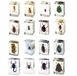 16PC Small Realbug Paperweight