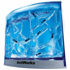 AntWorks Illuminated Gel Ant Farm
