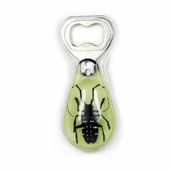 Asian Longhorn Beetle Glow In The Dark Bottle Opener Magnetic