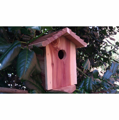 Birdhouse Spy Camera w/ DVR (Rechargeable Battery)