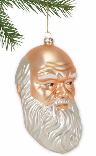 Charles Darwin Ornament - Click to enlarge