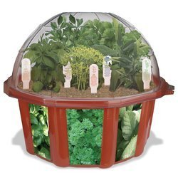 Culinary Herb Garden Growing Kit - Click to enlarge