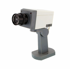 Fake Motion Activated Camera