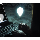 Glow In The Dark USB Light Bulb