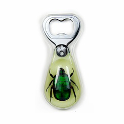 Green Chafer Beetle Glow In The Dark Bottle Opener Magnetic