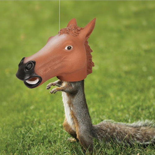 Horse Head Squirrel Feeder - Click to enlarge