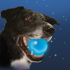 Meteorlight K9 L.E.D. Dog Ball