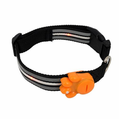 NightSafe LED Dog Collar