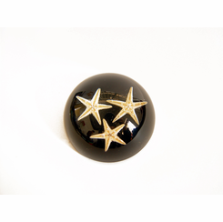 Star Fish Paperweight Black Desk Decoration