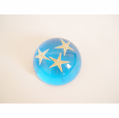 Star Fish Paperweight Clear Blue Desk Decoration