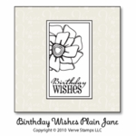 Birthday Wishes Plain Jane