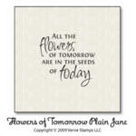 Flowers of Tomorrow Plain Jane