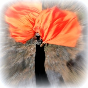 Fire Orange Iridescent Solid Power Worship Flags with Flexible Rods (2)