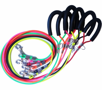 DynaMutt Biothane Waterproof Dog Leashes