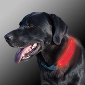 Nite Ize Nite Dawg LED Collar Covers