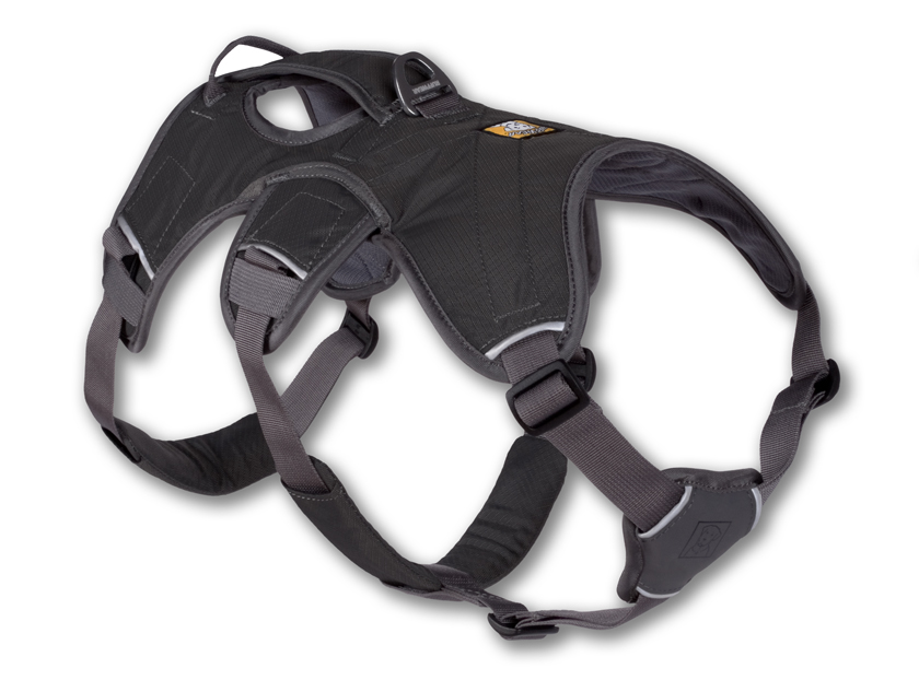 Ruffwear Web Master Padded Dog Harness With Built-In