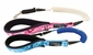Surf's Up Tangle Free Stretch Dog Leashes