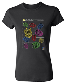 """SHELDON"" T:  ""Nanotubes""� - for Women"