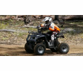 <h2>125cc Mid Size Youth Models</h2>