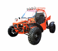 BMS 800cc V-Twin Dune Buggy - Fuel Injectioned - Automatic Transmission