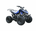 COOLSTER Deluxe Sport Youth 125cc ATV. Upgraded Suspension - Larger Tire Size  Free Rack! LOWEST PRICE! CALIF LEGAL! <h3>Rugged Sport Model</h3>