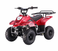Jet Moto Series Ranger Youth 110cc ATV -