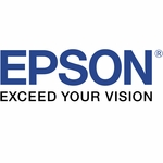 Epson continuous ink system