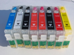 Epson R1900 Refillable Cartridges