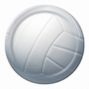 All Star Volleyball