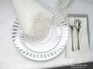 Casino Porcelain Look Disposable Heavyweight Plastic Plates