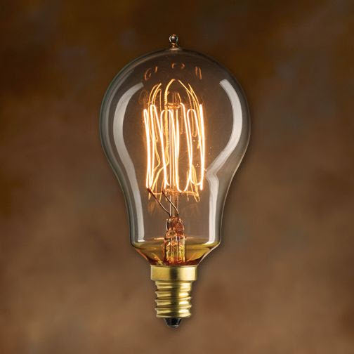 25 Watt Antique Light Bulb