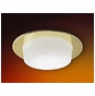 4-Inch Line Voltage Recessed Lighting Trim with Drop Opal Glass for Shower