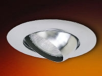 4-Inch Line Voltage Recessed Lighting Trim with Adjustable Eyeball