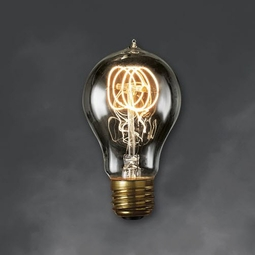 40 Watt - Antique Light Bulb - A19 Victorian - Medium Base - Bulbrite Nostalgic Smoke