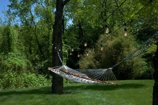 Hammock with globe string lights between two trees