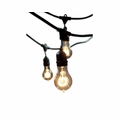 48 Foot - Outdoor String Light Kit - E26 Medium Base Sockets - Antique A19 Light Bulbs