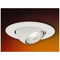 5-Inch Line Voltage Recessed Lighting Trim with Adjustable Eyeball, PAR20