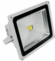 50-Watt LED Panorama Pro Floodlight with Mounting Bracket