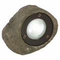 Halogen MR16 20-Watt 12-Volt Landscape Decorative Rock Spotlight