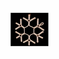 LED Classic Snowflake Rope Light Motif