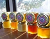 Zia Queen Bee 100% Pure & Raw NM Honey