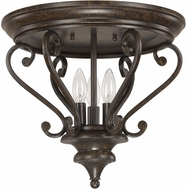 Capital Lighting Ceiling Lights