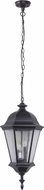 Craftmade Z2921-11 Chadwick Traditional Midnight Exterior Hanging Light