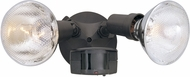 Designers Fountain P218C-87 Area & Security Modern Distressed Bronze Exterior Motion Detector Outdoor Security Lighting