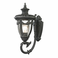 ELK 45075-1 Anise Traditional Textured Matte Black Outdoor Wall Sconce Lighting