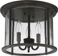 Exteriors Z2837-12 Carlton Aged Bronze Brushed Outdoor Ceiling Lighting