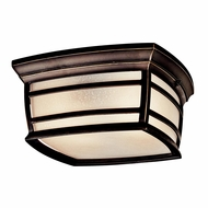 Kichler 49277RZFL McAdams Rubbed Bronze Finish 5.5  Tall Exterior Ceiling Light Fixture