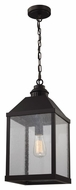 Feiss F2959-1ORB Lumiere' Country Oil Rubbed Bronze Finish 9.5  Wide Foyer Hanging Light Fixture