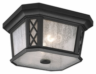 Murray Feiss OL9513TXB Wembley Park Traditional Textured Black Finish 12  Wide Outdoor Overhead Light Fixture