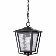 Quoizel ALF1910IB Alfresco Traditional Imperial Bronze Finish 10  Wide Outdoor Lighting Pendant